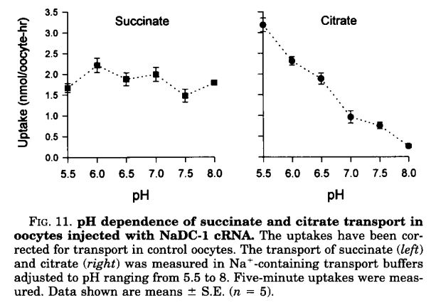 ph dependence of citrate transport from pajor first jbc paper