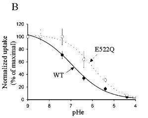 effect-of-extracellular-ph-on-calcium-uptake-through-trpv5-in-oocytes