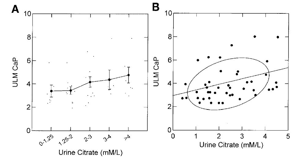 effects of added citrate on ULM for CaP